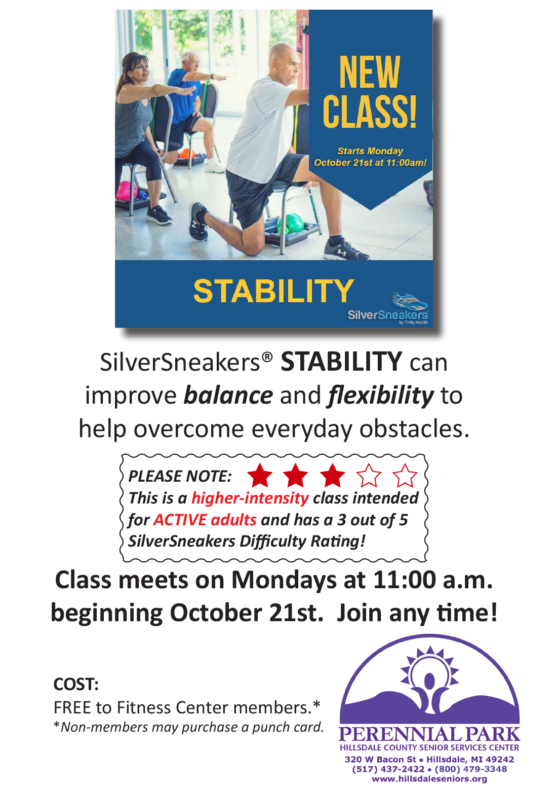 STABILITY flyer image